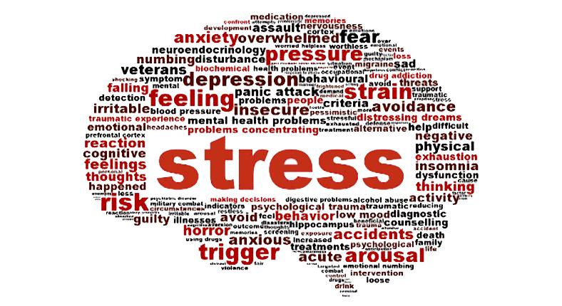 kurumsal stres yönetimi eğitim seminer