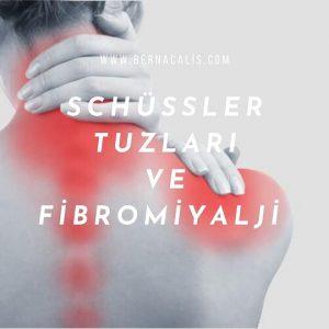 schüssler tuzları fibromiyalji
